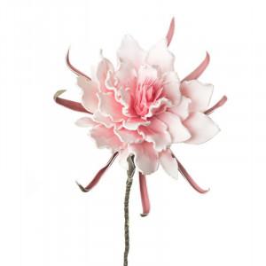 L'OCA NERA kvet 1P113