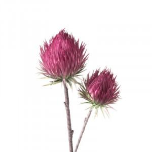 L'OCA NERA kvet 1P134