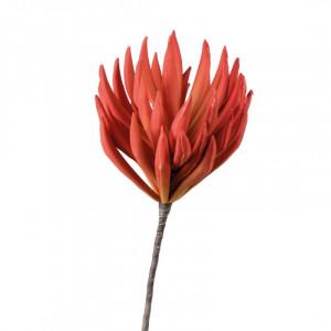 L'OCA NERA kvet 1P145