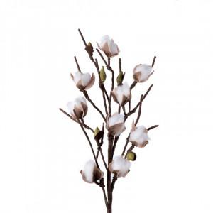 L'OCA NERA kvet 1P149