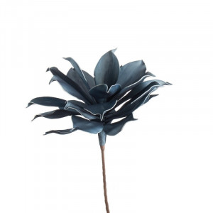 L'OCA NERA kvet 1P165