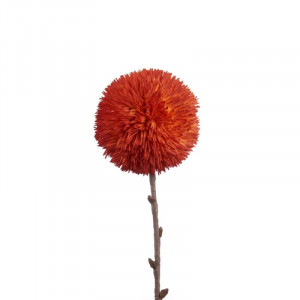 L'OCA NERA kvet 1P168