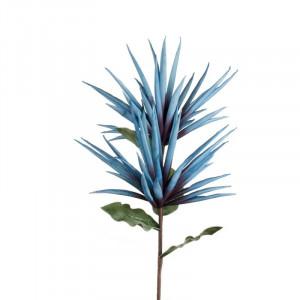 L'OCA NERA kvet 1P170